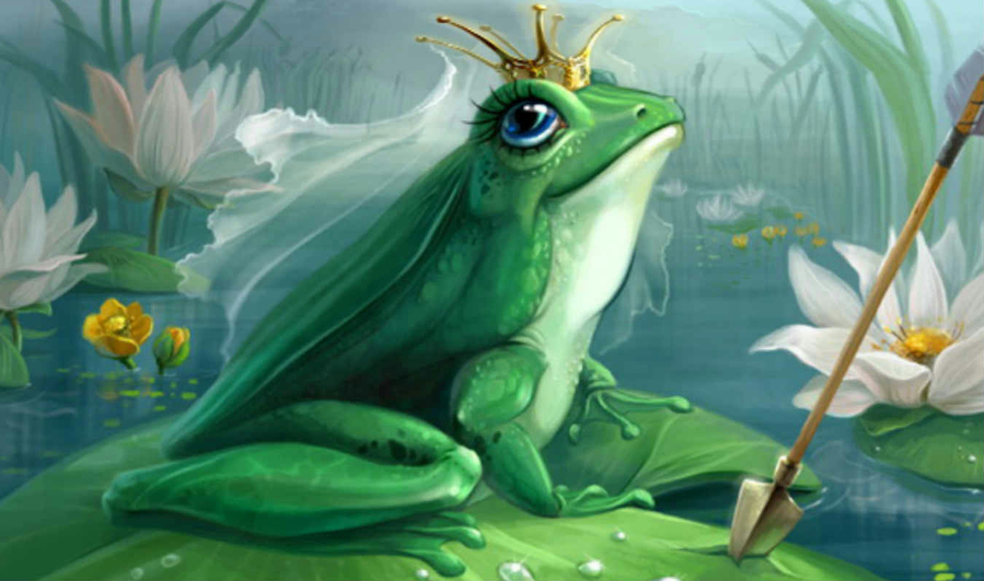 картинки лягушка царевна