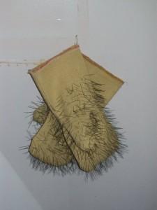 Ежовые рукавицы — Симорон всея Планеты
